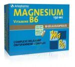 Arkovital Magnésium Vitamine B6 Gélules B/120 à Mérignac