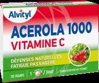 Govital Acerola 1000 à Mérignac