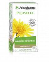 Arkogélules Piloselle Gélules Fl/45 à Mérignac