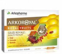 Arkoroyal Royal'Fruits Gelée royale Goji Grenade Baobab Solution buvable 20 Ampoules/10ml à Mérignac
