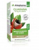 Arkogélules Guarana Bio Gélules Fl/45 à Mérignac