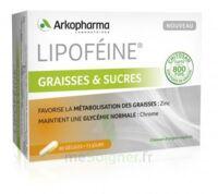 Lipofeine Graisse et Sucres Gélules B/60 à Mérignac