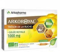 Arkoroyal Gelée Royale Bio 1000 Mg Solution Buvable 20 Ampoules/10ml à Mérignac