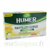 HUMER PASTILLE GORGE à l'etrait sec de thym 24 pastilles à Mérignac