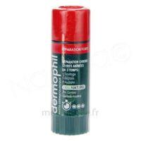 Dermophil Indien Réparation Forte Lèvres 4 g à Mérignac