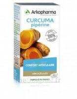 Arkogelules Curcuma Pipérine Gélules Fl/45 à Mérignac