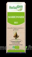 Herbalgem Marronnier Macérat bio 30ml à Mérignac