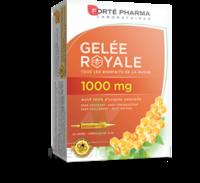 Forte Pharma Gelée Royale 1000 Mg Solution Buvable 20 Ampoules/10ml à Mérignac