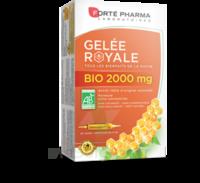 Forte Pharma Gelée Royale Bio 2000 Mg Solution Buvable 20 Ampoules/15ml à Mérignac