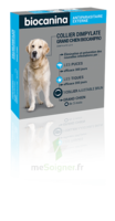 Biocanipro Collier chien B/1 à Mérignac