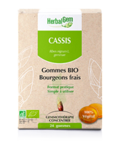 Herbalgem Gomme cassis bio B/24 à Mérignac