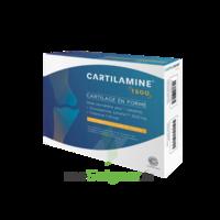 Cartilamine 1500mg Tablettes Articulations B/30 à Mérignac