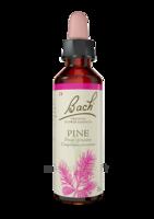 Fleurs De Bach® Original Pine - 20 Ml à Mérignac