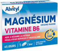 Govital Magnésium Vitamine B6 Comprimés B/45 à Mérignac
