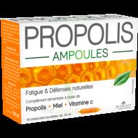 3 CHENES PROPOLIS Solution buvable 10 Ampoules/10ml à Mérignac